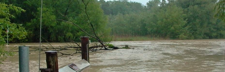 130602_Hochwasser am Alten Rhein